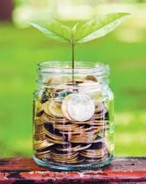 ARE YOU A SUSTAINABLE INVESTMENT OR NOT?
